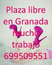 699509551 - Se ofrece plaza 24 horas en Granada